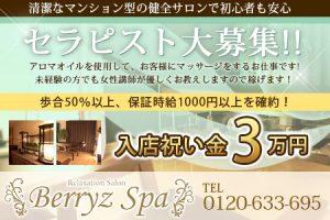 Berryz Spa-ベリーズスパ-の求人
