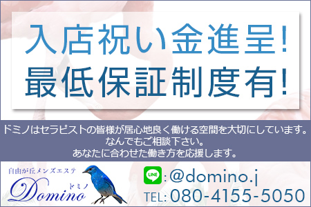 Domino~ドミノ求人画像