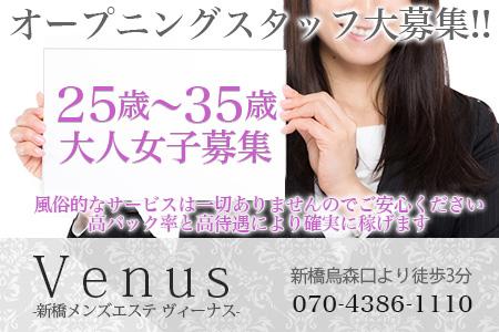 新橋メンズエステ Venus(ヴィーナス)求人画像