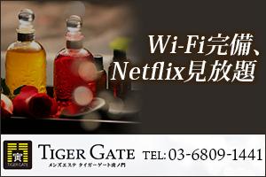 Wi-Fi完備、Netflix見放題
