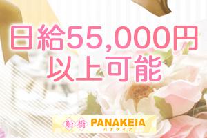 日給55,000円以上可能