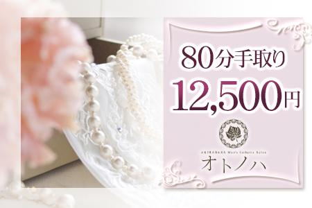 80分12,.500円バック+オプション全額バック(平均5,000円)